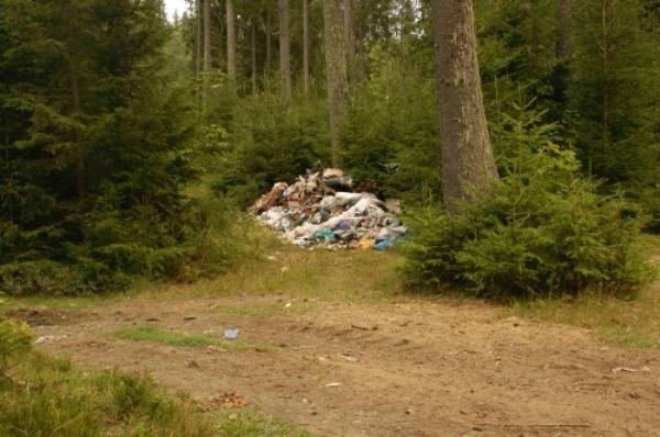 Як врятувати Карпати від сміття? Гройсман обговорив дане питання з президентом Угорщини