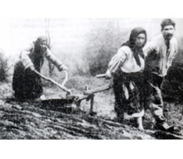 Селяни на Закарпатті за часів чеського панування часто орали й так…