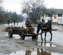Головний транспорт для волохів — запряжений конем віз