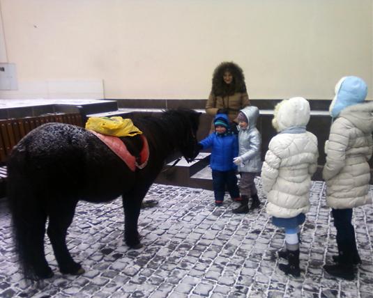 У центрі Ужгорода на дітей чекає поні Ксюша (ФОТО)