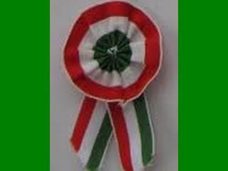 «Карпатська Січ» також каже, що не причетна до інциденту з угорськими туристами