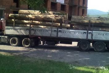 На Закарпатті продовжують відстежувати незаконних торгівців лісом-кругляком