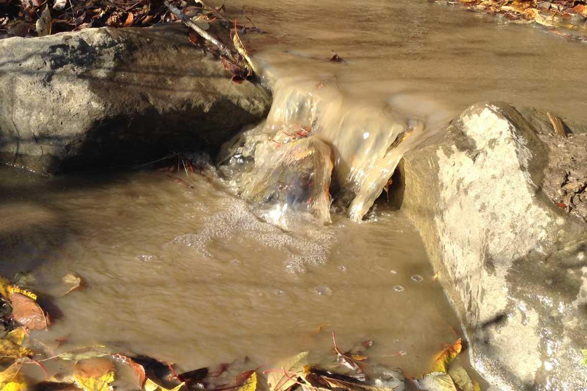 Через вирубку лісу та його неправильне транспортування Біласовиця на Воловеччині залишилася без питної води