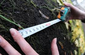 У товариства планують забрати землю вартістю в 1 млн грн за несвоєчасну сплату оренди