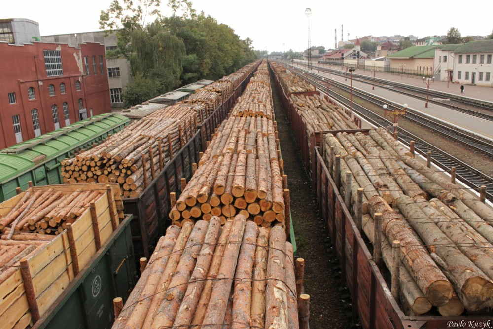 "Результат пошуку зображень за запитом ""експорт лісу"""