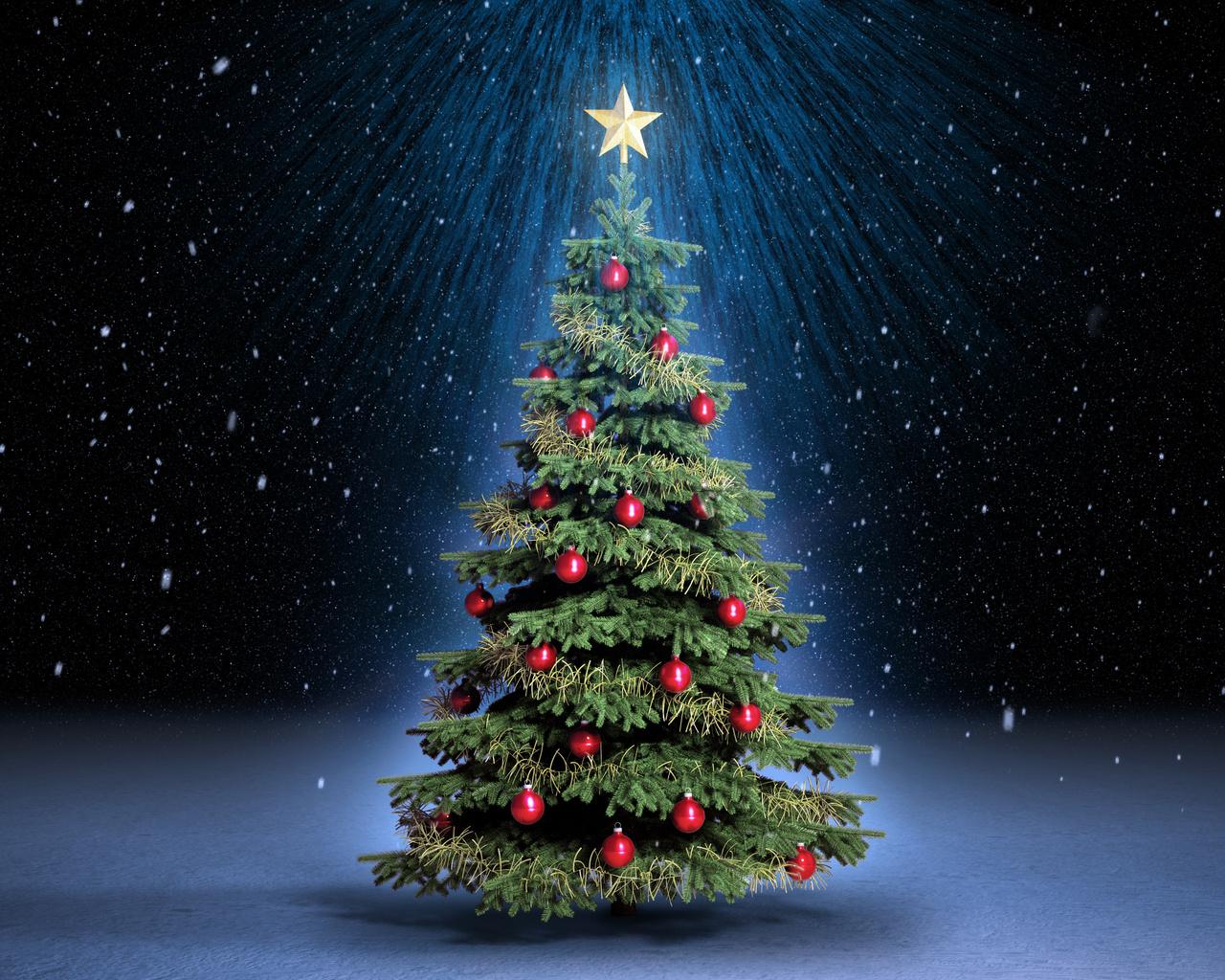 Запалювати вогні на головній новорічній ялинці в Іршаві будуть із частуваннями кутею та чаєм