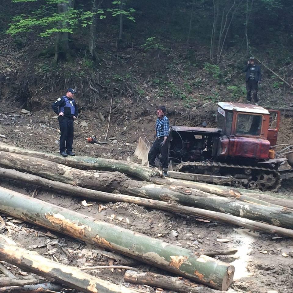 На трасі Київ-Чоп виявили трактор зі свіжозрубаними деревами і чоловіків із бензопилою