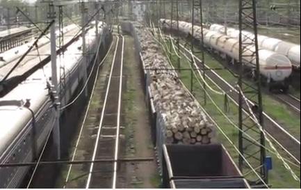 На залізничних станціях на Закарпатті накопичилося 173 вагони з лісом на відправку до країн Євросоюзу – ОДА