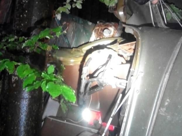 Внаслідок нещасного випадку на Перечинщині загинув лісник
