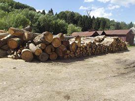 У результаті обшуків у Воловецькому лісгоспі вилучено майже 100 кубометрів