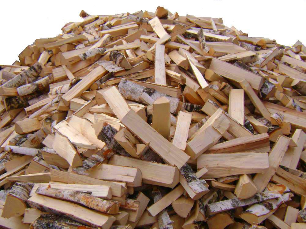 """У лісівників Закарпаття почалася заготівля """"легальних"""" дров"""
