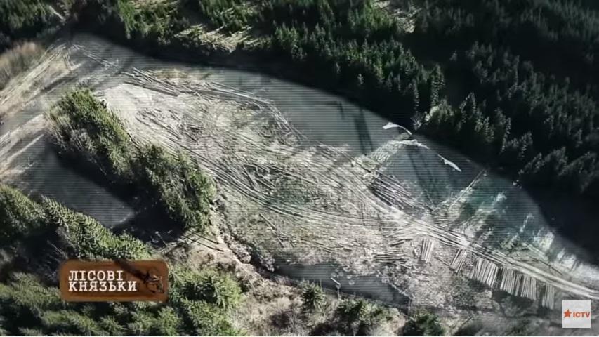 Контрабанда на Закарпатті: як чиновники заробляють на вирубці лісу - ICTV