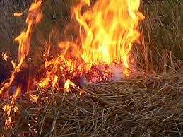 В пожежі згоріло понад 2,5 т сіна,