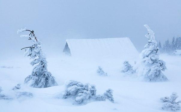 Закарпаття – в полоні снігу, краян просять подбати про заходи безпеки