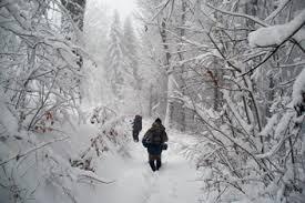 У горах на Закарпатті розшукали двох туристів з Полтавщини