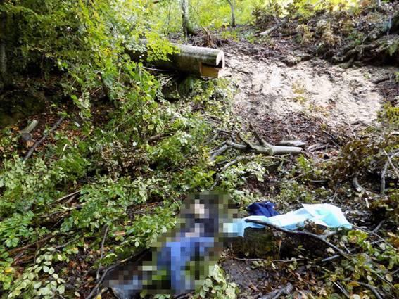 Під час заготівлі дров у лісі загинув чоловік