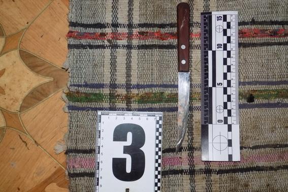 Під час сварки 23-річна жителька Міжгір'я вдарила свого 31-річного співмешканця ножем в шию (ФОТО)