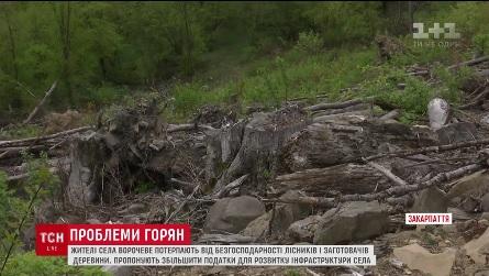 Жителі села потерпають від нещадної вирубки лісів - ТСН (ВІДЕО)