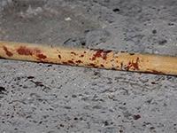 Чоловік, що сп'яна до смерті забив палицею дружину на Виноградівщині, постане перед судом