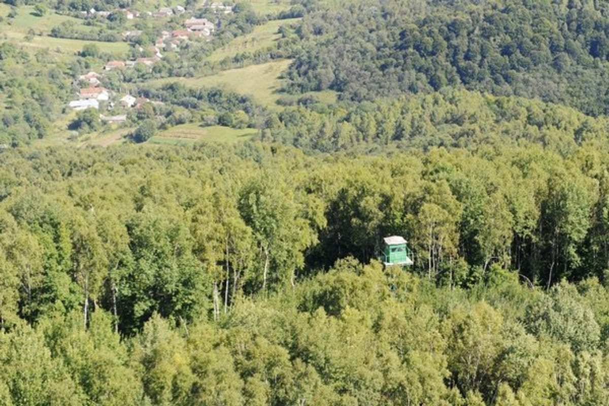 Невеликий літак, що прилетів з Закарпаття, перевіз у Словаччину 10 нелегалів і встиг відлетіти