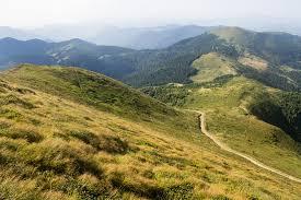 На Тячівщині одразу трьом туристам під час проходження маршруту стало зле