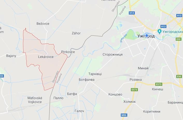 Неподалік Ужгорода в Словаччині затримали 12 нелегалів з В'єтнаму
