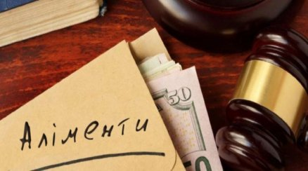 Батькові, котрий заборгував понад 70 тис грн аліментів, суд присудив 120 годин суспільно корисних робіт