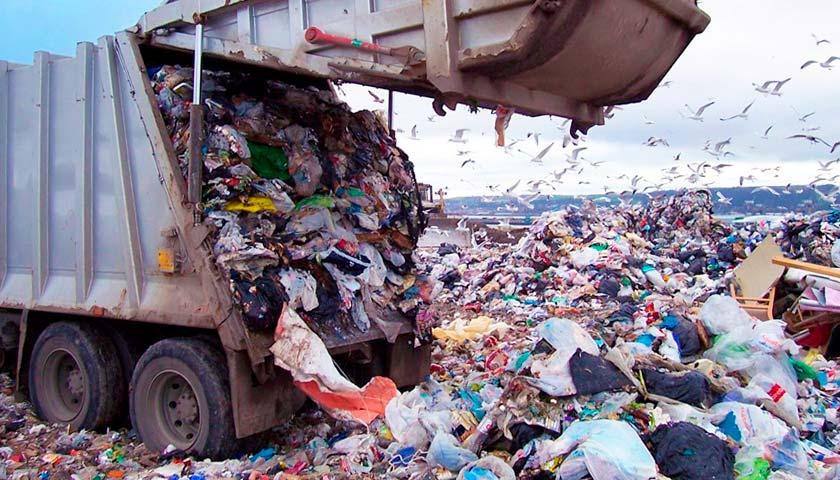 Закарпаття здивувало експертів: перше - по сортуванню сміття та передостаннє - по переробці відходів