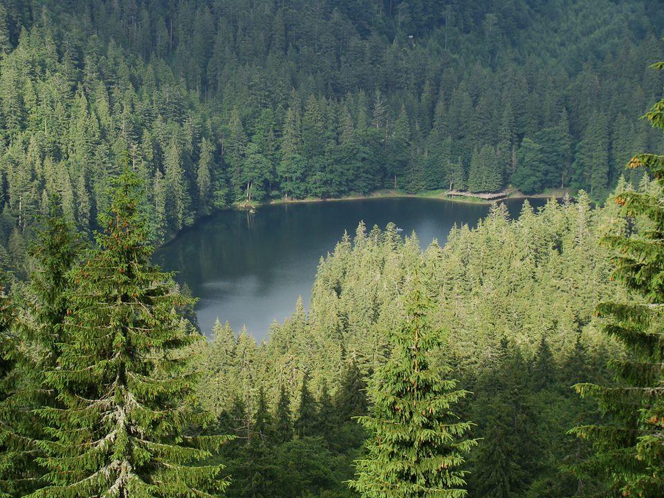 16 -17 липня вхід на озеро Синевир буде повністю заборонений