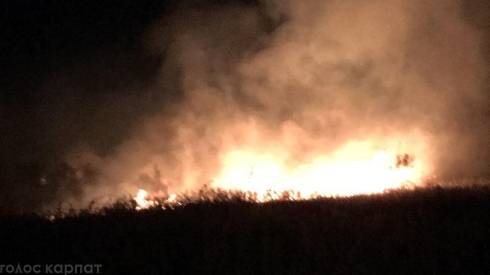 У Виноградові масштабно горить суха трава, вогонь підповзає до житлового кварталу (ФОТО, ВІДЕО)
