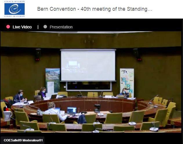 Постійний комітет Бернської конвенції у виключному порядку розглянув кейс закарпатської Боржави (ФОТО)