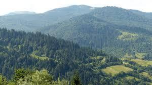 Мінекоенерго закликає громадськість долучитися до захисту Ужанського парку на Закарпатті