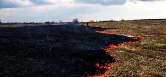 На Закарпатті люди продовжують спричиняти масові пожежі сухостою