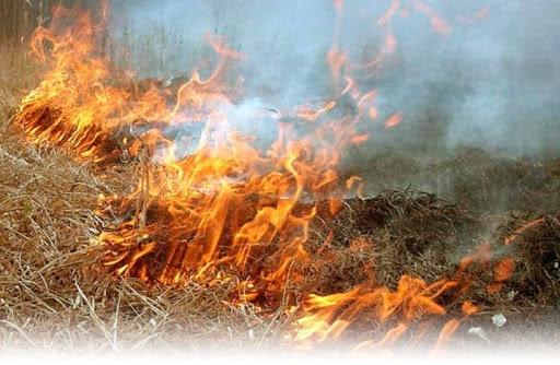 Унаслідок загорання сухої трави на Закарпатті горіли дачний будинок та будівля, що не експлуатується