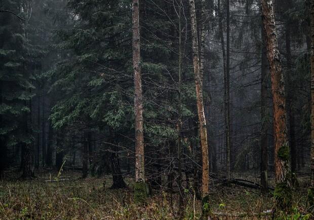 Чоловіка, який кілька днів тому пішов із дому іне повернувся, місцеві мешканці знайшли мертвим у лісі