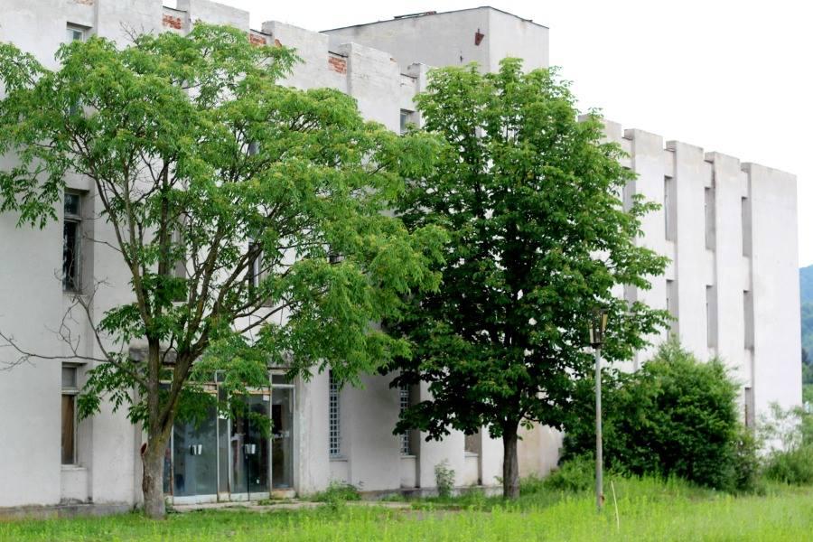 Балога власним коштом викупив приміщення колишнього машинобудівного заводу у Довгому для облаштування нових школи та дитсадка (ФОТО)