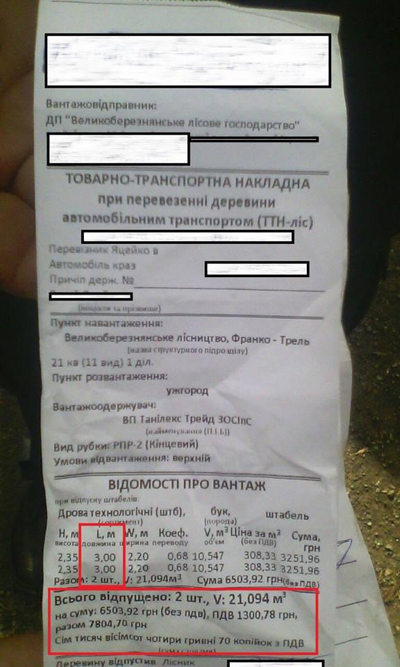 Журналісти вказали поліції на лісовоз з