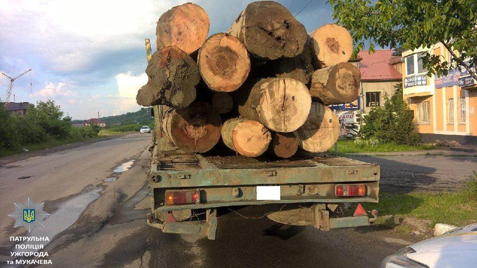 На посту в Нижніх Воротах на Закарпатті затримали вантажівку із незадокументованим дубом (ФОТО)