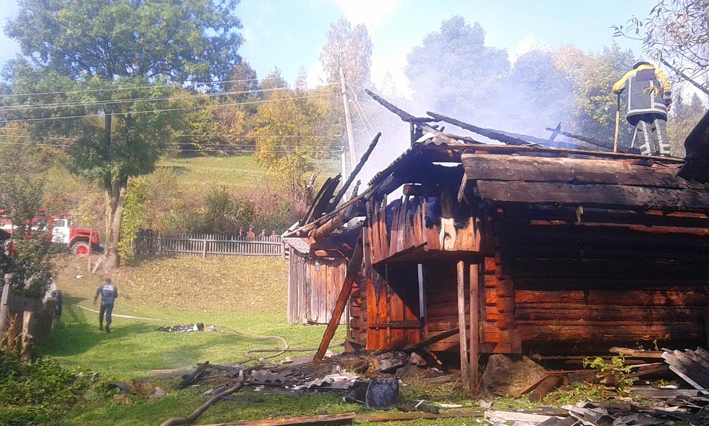 В прикарпатському лісництві трапилась пожежа