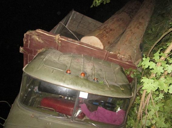 На Тячівщині двох пасажирів ЗІЛа, що перекинувся дорогою, вбило стовбурами незаконно зрізаних яворів
