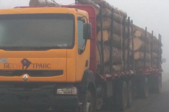 На Хустщині затримали вантажівку із 40