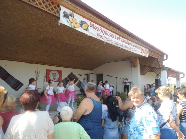 У Гечі на закарпатській Берегівщині відбувся восьмий фестиваль варіння леквару