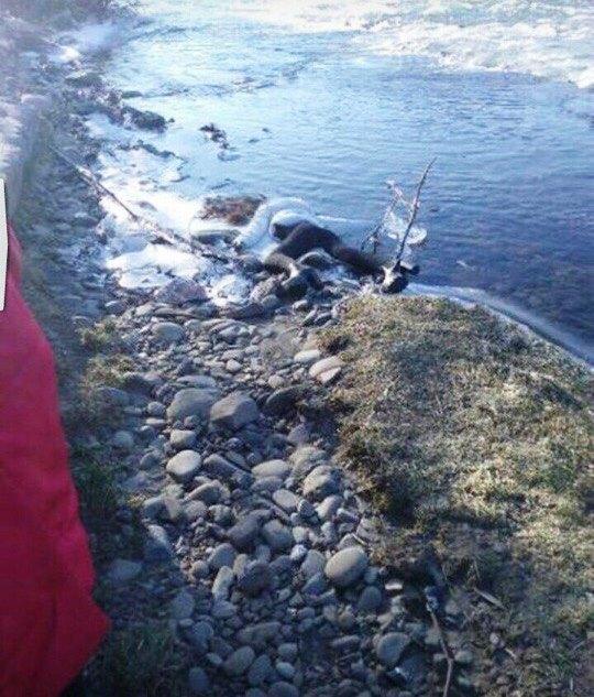 У Дубовому сталося вбивство молодої жінки (ФОТО)