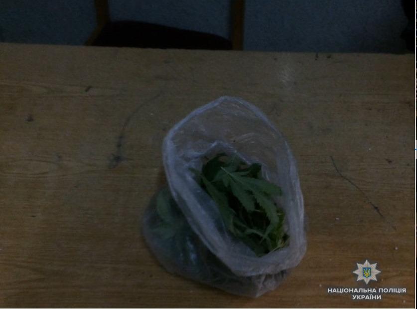 У п'янючого мешканця Хустщини, що вночі сидів посеред дороги, знайшли ще й марихуану (ФОТО)
