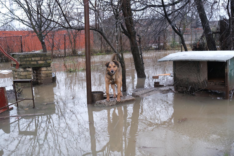 """""""Вода по самі фари... Добре коли ти на колесах. А як бути пішоходам???"""", -  Хроніка затопленого Ужгорода (ФОТО, ВІДЕО)"""