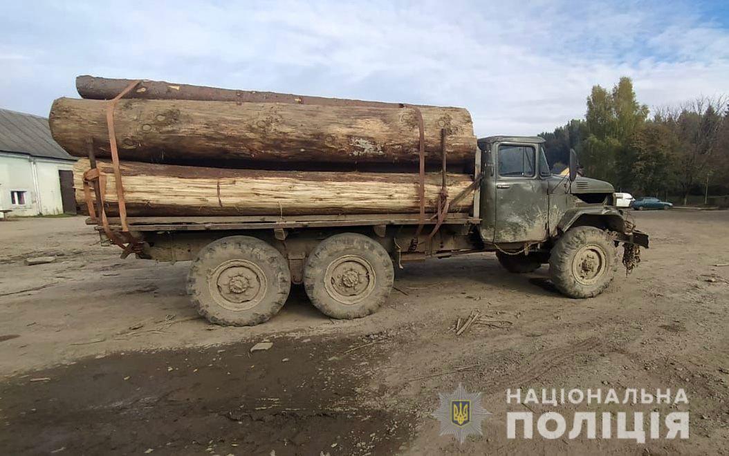 У Соймах зупинили вантажівку з нелегальною деревиною