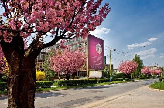 Картинки по запросу прешовський університет