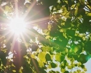 На Закарпатті після двох днів сильної спеки з 12 серпня температура знову знизиться