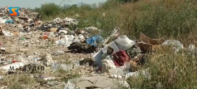 Виноградівський район через сміття – на межі екологічної катастрофи (ВІДЕО)