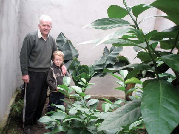 Саду вирощує екзотичні рослини фото